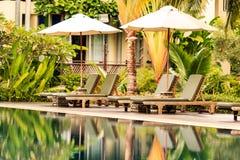 豪华游泳池在一个热带庭院里 库存图片