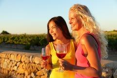 喝红色玫瑰酒红色的人们在葡萄园 免版税库存图片