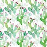 水彩无缝的仙人掌样式背景 免版税库存照片