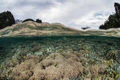 Коралловый риф и острова Стоковая Фотография RF