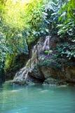 牙买加 小的瀑布在密林 免版税库存照片