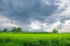 Голубое облако, цвет Стоковая Фотография