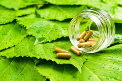 Пилюльки в опарнике над зелеными листьями Здоровый витамин Стоковое Изображение