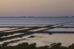 诺尔德尔夫里德里希斯科格(德国) -在北海的日落 库存照片