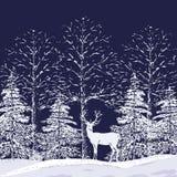 Χιονώδες δάσος Στοκ φωτογραφίες με δικαίωμα ελεύθερης χρήσης