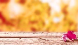 选拔在一张土气木桌上的红色秋天叶子 库存照片