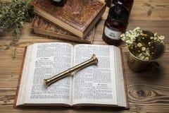 Η αρχαία φυσικά ιατρική, τα χορτάρια και τα φάρμακα Στοκ Εικόνα