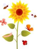 向日葵,花传染媒介 免版税图库摄影