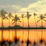 Тропический заход солнца пляжа рая с пальмами Стоковая Фотография RF