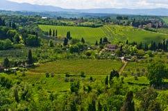 小山、葡萄园和柏树,在圣吉米尼亚诺附近的托斯卡纳风景 免版税图库摄影