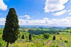 小山、葡萄园和柏树,在圣吉米尼亚诺附近的托斯卡纳风景 图库摄影