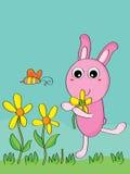 兔子采撷花 免版税库存图片