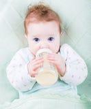 有一个牛奶瓶的美丽的婴孩在一条温暖的被编织的毯子下 图库摄影