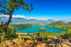Кровоточенная панорама озера, Словения, Европа Стоковое Изображение