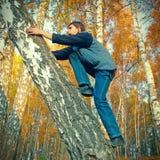 在树的少年攀登 库存照片