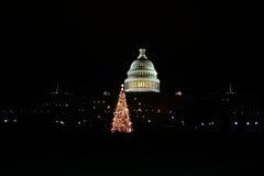 国会大厦圣诞节 图库摄影