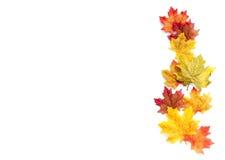 Предпосылка благодарения осени Стоковое Фото