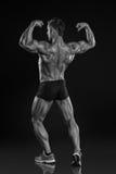 强的运动人健身式样摆在的背部肌肉,三头肌, 免版税库存照片