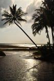 有棕榈树的热带海滩天堂 免版税库存照片