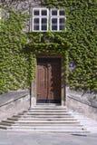 плющ фасада Стоковая Фотография RF