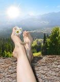 在脚趾之间的雏菊 放松在夏天阳光下 免版税库存图片