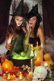 两个巫婆酿造魔药 免版税库存照片