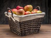 在篮子的苹果 库存图片