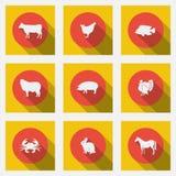 Μοντέρνα επίπεδα εικονίδια με τους μακροχρόνιους τύπους σκιών προϊόντων κρέατος Εννέα ζώα σε ένα φωτεινό υπόβαθρο Στοκ φωτογραφίες με δικαίωμα ελεύθερης χρήσης