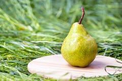 水多的美味梨 免版税库存照片
