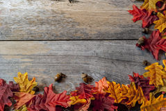 在桌上的秋天叶子 免版税库存图片