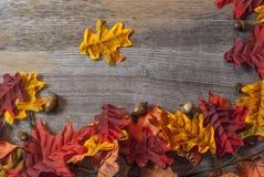 在桌上的秋天叶子 图库摄影