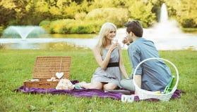 在野餐的年轻夫妇 库存图片