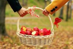恋人野餐篮子风景森林自然 免版税库存照片