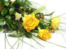 розы Стоковые Фотографии RF