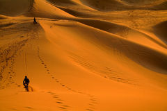 骑自行车的沙漠 免版税库存图片