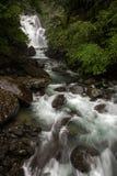 内洞瀑布和小河在豪华的森林中间在台湾 免版税图库摄影