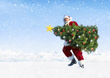 在雪的圣诞老人运载的圣诞树 免版税库存图片