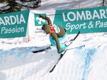 лыжа фристайла Стоковые Изображения RF