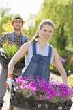 运载在条板箱的微笑的花匠花盆在植物托儿所 免版税图库摄影