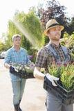 运载在条板箱的花匠花盆在植物托儿所 库存照片