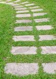 在绿草的道路 免版税库存照片