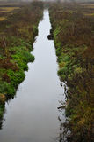 Река на осени Стоковая Фотография RF