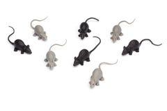 在白色背景-小组玩具老鼠-隔绝的万圣夜 库存图片
