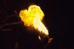 火显示 免版税库存照片