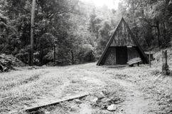 老小屋的黑白图象在森林里 免版税库存图片