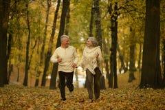 пары зреют гулять Стоковые Фото