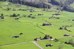 Όμορφα λιβάδια στις ελβετικές Άλπεις Στοκ εικόνα με δικαίωμα ελεύθερης χρήσης