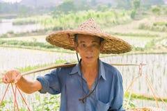 中国农夫 库存照片