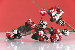 圣诞节槲寄生和莓果装饰 免版税库存照片
