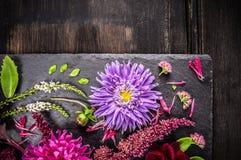 在秋天风景的紫色翠菊花在黑暗的桌上 免版税库存照片